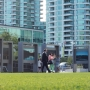 Daytime photo of Harbourfront Centre Exhibition Common. Photo credit: Riley Wallace.